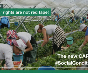 The new CAP needs social conditionality