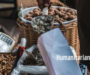 Αγγελίες Εργασίας-Ανθρωπιστικός Τομέας 8/4/2021