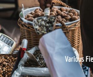 Αγγελίες Εργασίας-Διάφοροι Τομείς  8/4/2021
