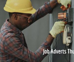 Job Adverts Thursday 29/7/2021