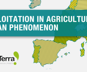 """Online event: """"Labour exploitation in agriculture is a European phenomenon"""""""